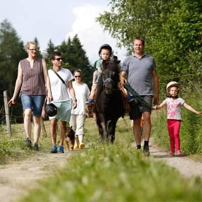 Ausreiten mit unseren Ponys im Urlaub am Bauernhof