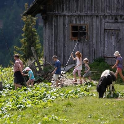 Ferien am Bauernhof in Gmünd