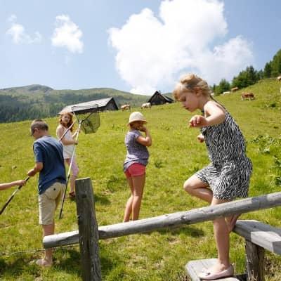 Urlaub auf der Alm in Kärnten!