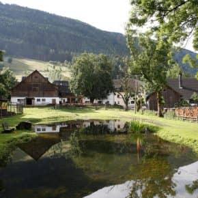 Familien- und Kinderbauernhof in Gmünd