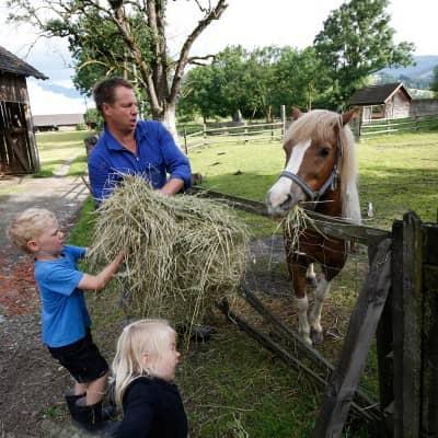 Tiere füttern am Kinderbauernhof in Österreich