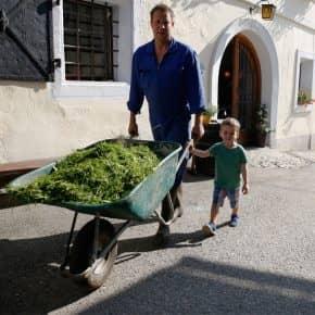 Jeder hilft mit am Baby- und Familienbauernhof Glawischnig-Hofer