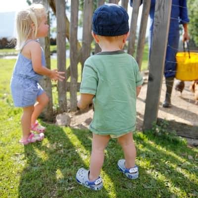 Windelflitzer am Baby- und Familienbauernhof Glawischnig-Hofer