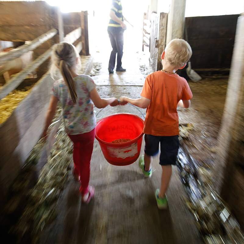Erlebnis im Kinderbauernhof-Urlaub im Stall